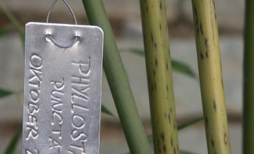 Garten-Details_7