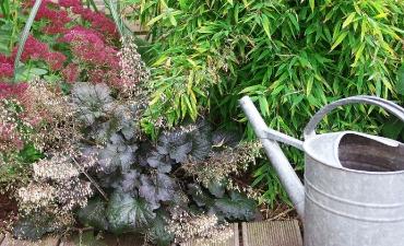 Garten-Details_9