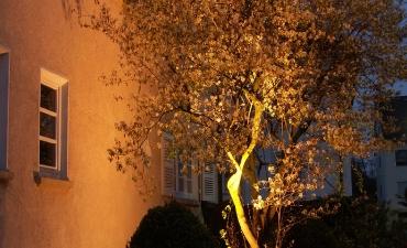Gartenbeleuchtung_1