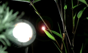 Gartenbeleuchtung_2