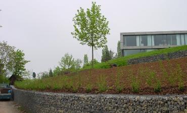 Galerie: Hausgarten