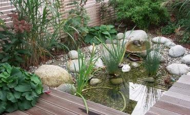 Wasser & Bewässerung_5
