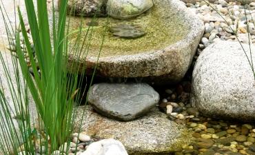 Wasser & Bewässerung_7